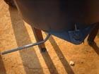 Бетоносмеситель принудительный 0.25 м.куб для перемешивания бетонов и растворов